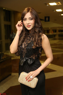 Angela Krislinzki in Transparent Black Gown at Rogue Movie Teaser Launch 1st March 2017 111.JPG