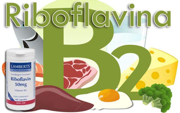 que es la vitamina b2 y para que sirve