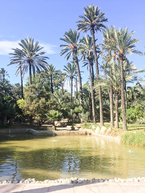 Parque El Palmeral de Alicante