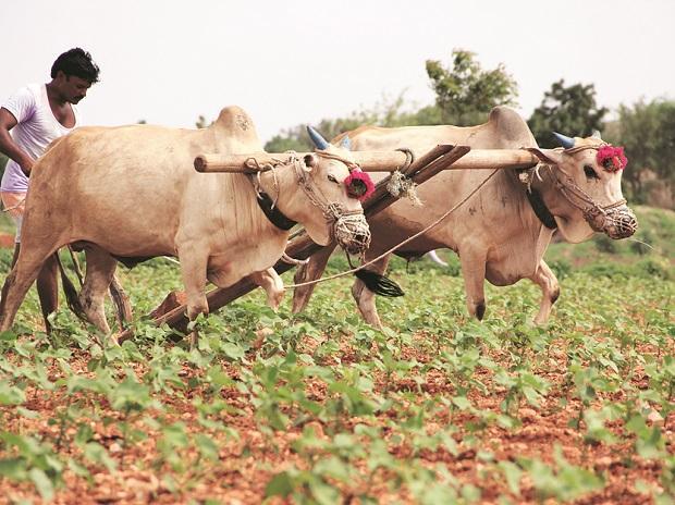 PM Kisan Maan Dhan Yojana Farmers Pension Scheme/2019/09/PM-Kisan-Maan-Dhan-Yojana-Farmers-Pension-Scheme.html