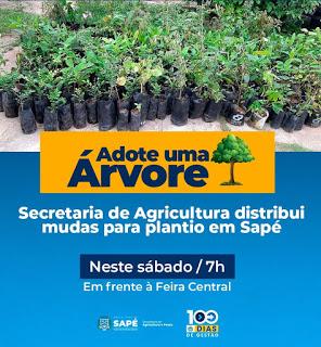 """Projeto """"Adote uma Árvore"""" é desenvolvido através de parceria entre Sec. De Agricultura e Pesca e Prefeitura Municipal de Sapé - PB"""