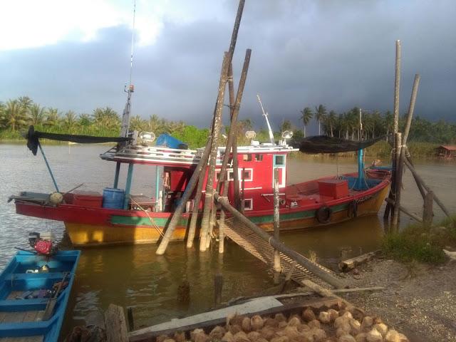 Candat sotong Kelantan