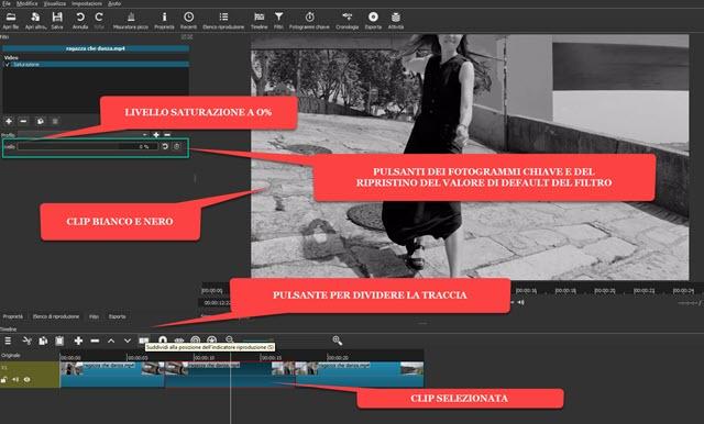 applicare la scala di grigi a clip video