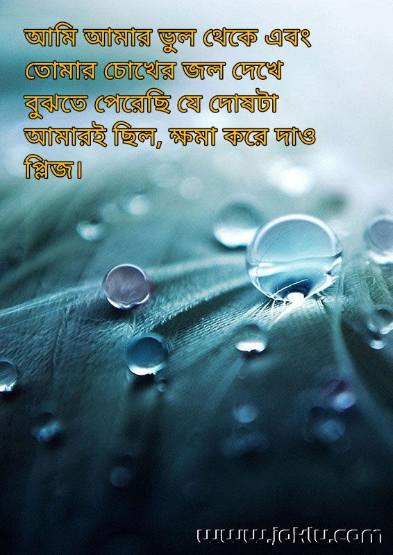 Forgive me sorry message in Bengali