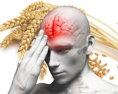 The 3 reasons you should NEVER eat wheat