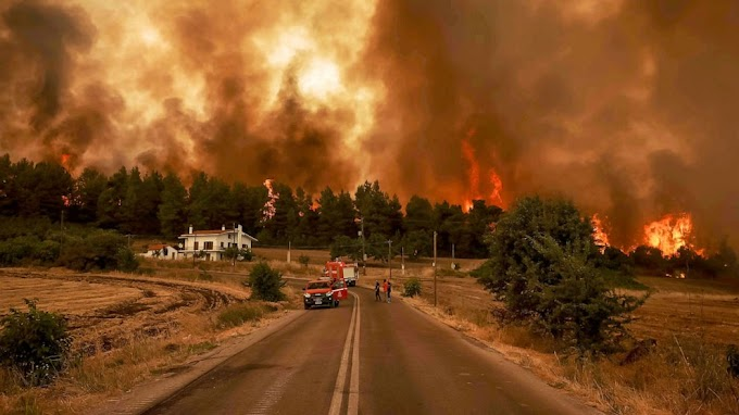 Tűzvész Görögországban: már Athén környékéről is ezrével menekítik az embereket