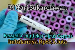 Dicari Sukarelawan imbalan 65juta Disuntik Virus Corona