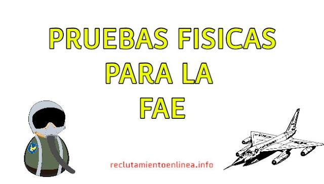 ᐅ Pruebas Fisicas para la FAE - Fuerza Aerea Ecuatoriana