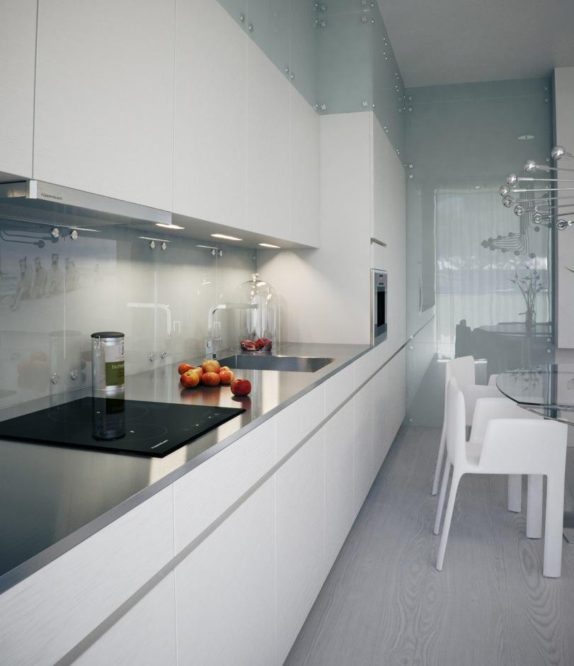 Alexander Lysak Visualization sleek narrow kitchen in white with reflective splash