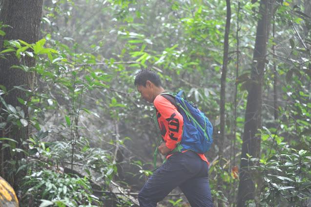 Sương mù khi leo núi Dinh