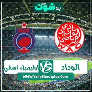 مباراة الوداد المغربي وأولمبيك اسفى