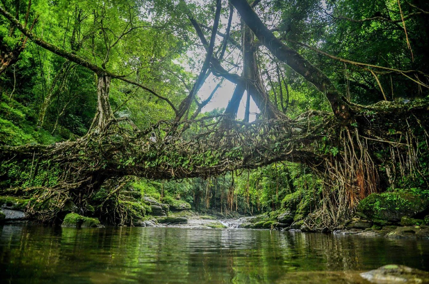 Mawlynnong, Meghalaya Travel 10 Uncommon Destinations in India