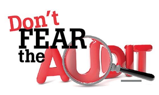 Pengertian Audit Beserta Jenis, Prosedur dan Tujuan Audit