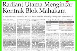 PT Radians Utama eyeing Mahakam block contract