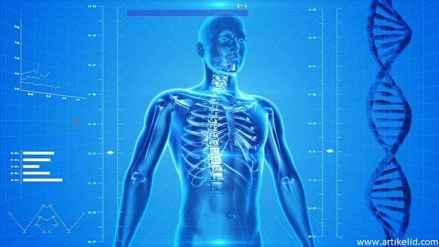 Cara-Menjaga-Kesehatan-Tubuh-Bagi-Manusia-Agar-Terhindar-Dari-Penyakit