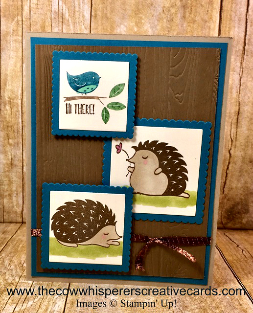 Card, Hedgehugs, Hedgehogs, Pinewood Planks Embossing Folder, Projects