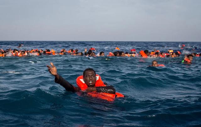 """""""Assassinos do Mediterrâneo"""" abundam na União Europeia"""