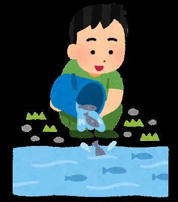 魚の放流のイラスト
