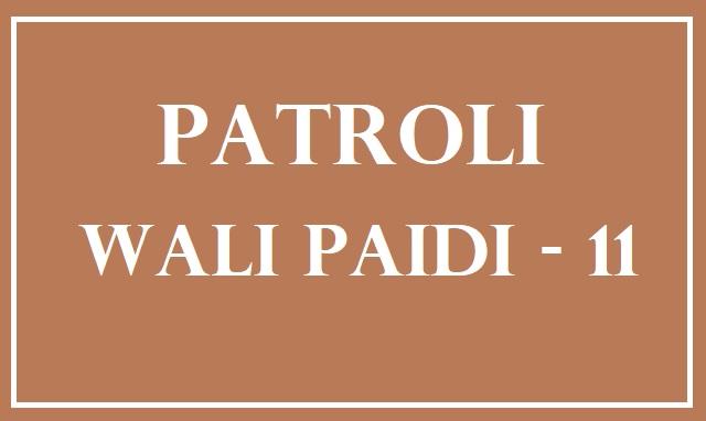 biografi wali paidi dalam serial patroli wali paidi