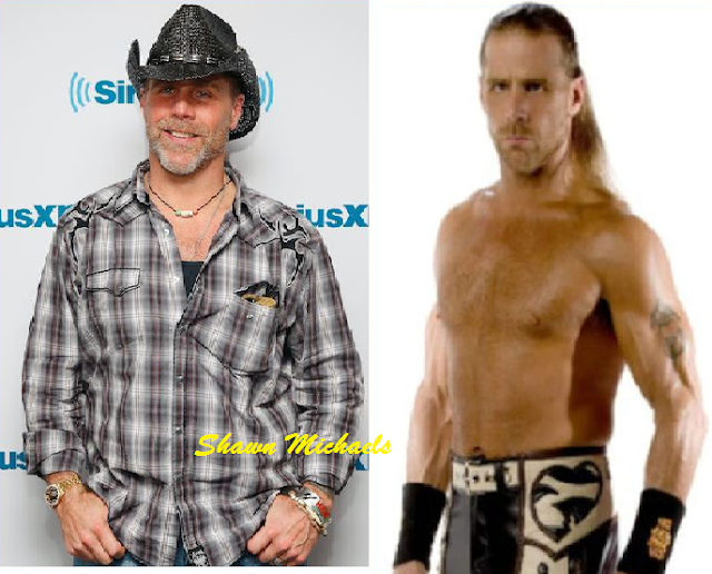 license Shawn Michaels pictures