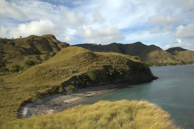 pink beach dan bukit sabana pulau komodo