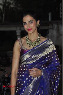 Model Shilpa Reddy Stills in Purple Silk Saree at Gudi Sambaralu 2017 Sri Ramachandra Swami Temple  0044.JPG