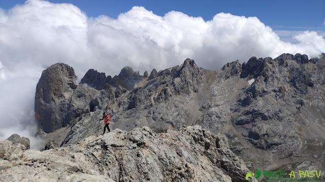 Vista hacia el Urriellu desde la cima de la Párdida