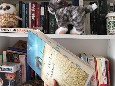 kitap, kitaplık, oyuncak