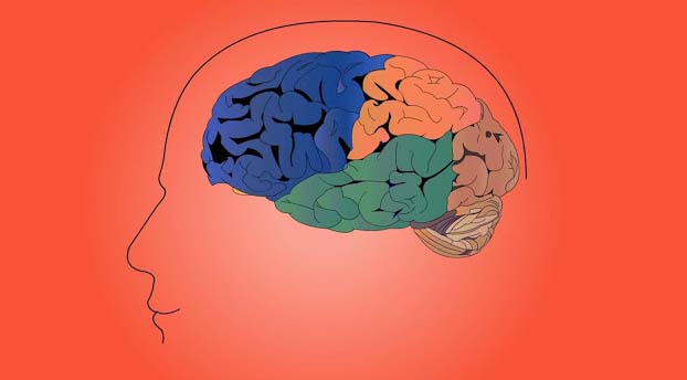 Thinking and body system has deep relation with each other. Ascending and descending of mental thought develops condition of restlessness, which specifically causes harm to the digestive system.