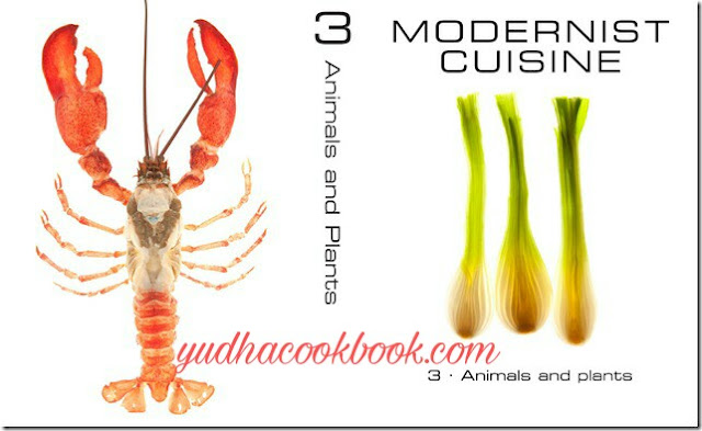 Modernist cuisine series animals and plants