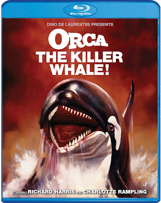 Cover art for Scream Factory's Blu-ray release of ORCA: THE KILLER WHALE!