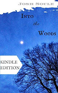 Into the Woods - An emotional mystery thriller by Josh Soule
