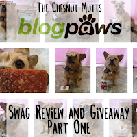 The Chesnut Mutts BlogPaws Swag Review and Giveaway Part One