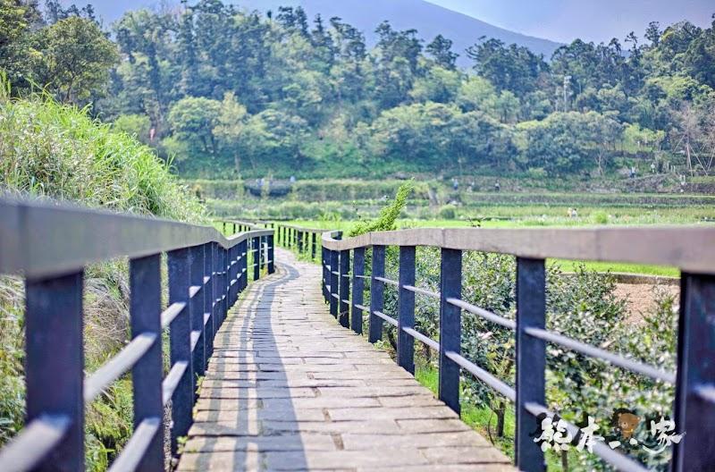 名陽匍休閒農莊|頂湖海芋步道~台北陽明山竹子湖海芋季官網封面照就是在這拍的