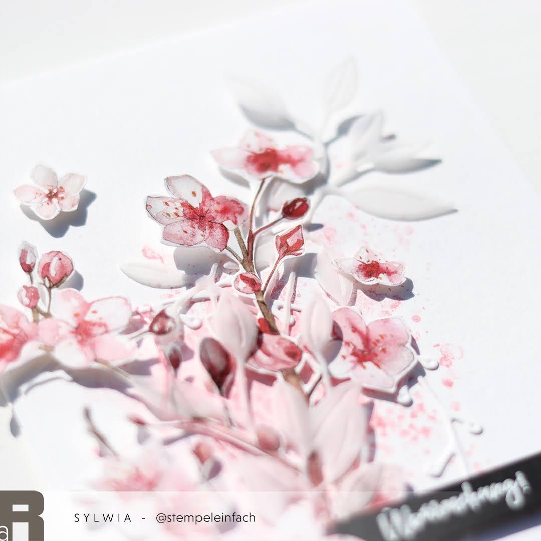 Kirschblueten-Karte-Aquarell