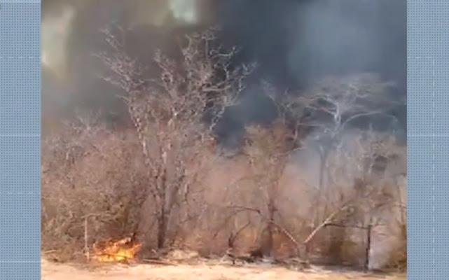 Fogo atinge cidade de Pilão Arcado, no norte da Bahia  (Foto: Reprodução/TV São Francisco)