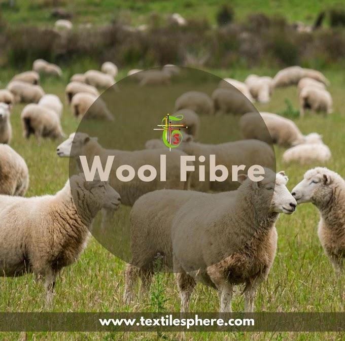 Introduction to Wool Fiber | Merino | Wool fiber