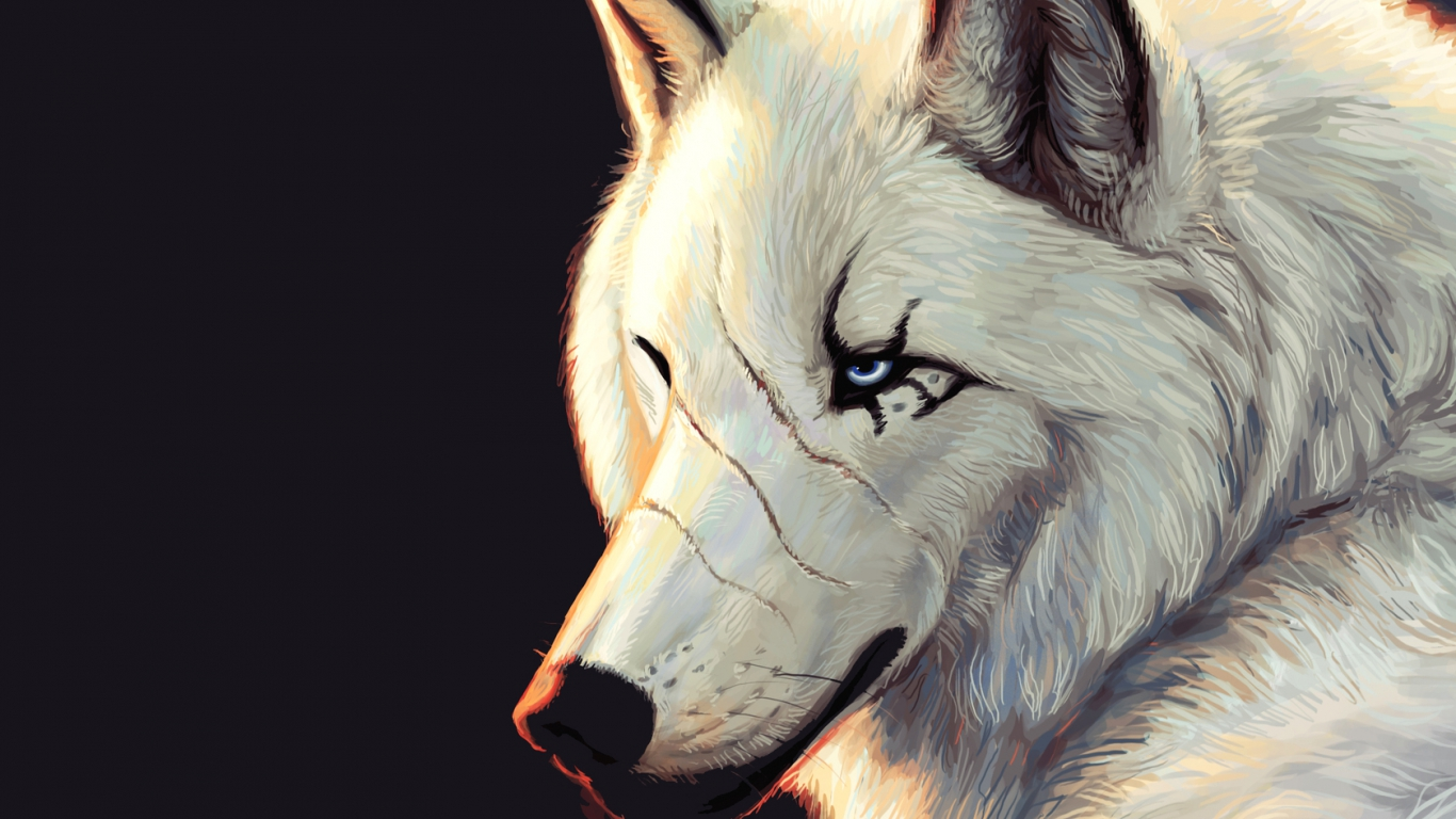 Must see   Wallpaper Horse Wolf - 1125401-1366x768-Wolf-scar  Pic_804316.jpg
