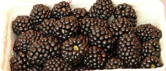 alergia na owoce