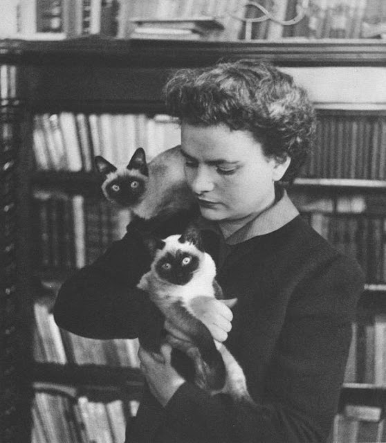 Feminist writer Elsa Morante with cats in her apartment. Photo: Wikipedia