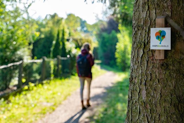 Premiumwanderweg DonAUwald | Etappe 3 von Gundelfingen nach Dillingen 06