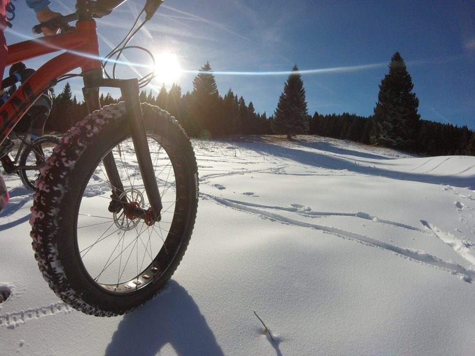 Fat Bike in Folgaria, Trentino Alps