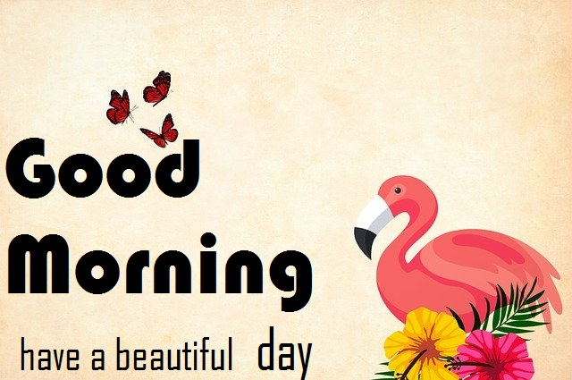 good morning message with bird painting image