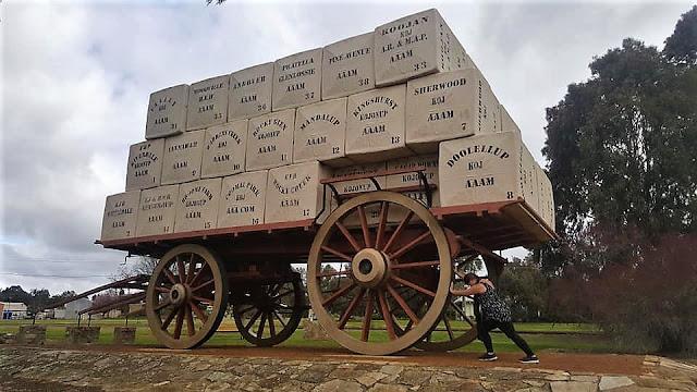 BIG Wool Wagon | Kogonup
