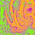 Taring - Nazar Palagan - Album (2014) [iTunes Plus AAC M4A]