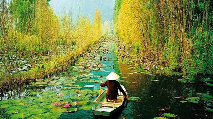 Возможности культурной интеграции протестантизма и даосизма во Вьетнаме: философский анализ