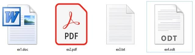डॉक्यूमेंट फाइल (Document Files)