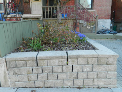 Toronto new garden installation Roncesvalles Village before Paul Jung Gardening Services