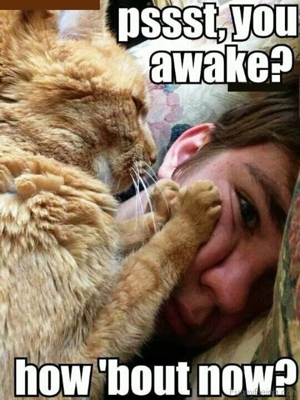 are you awake