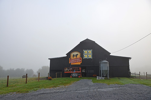 Wincrest Angus' barn is the 33rd of 40 barns in the Certified Angus Beef's #BrandTheBarn campaign.